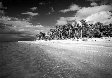Cayo Costa Island 1 1988 Panorama by Clyde Butcher