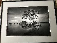 Gaskin Bay 1990 Panorama by Clyde Butcher - 1