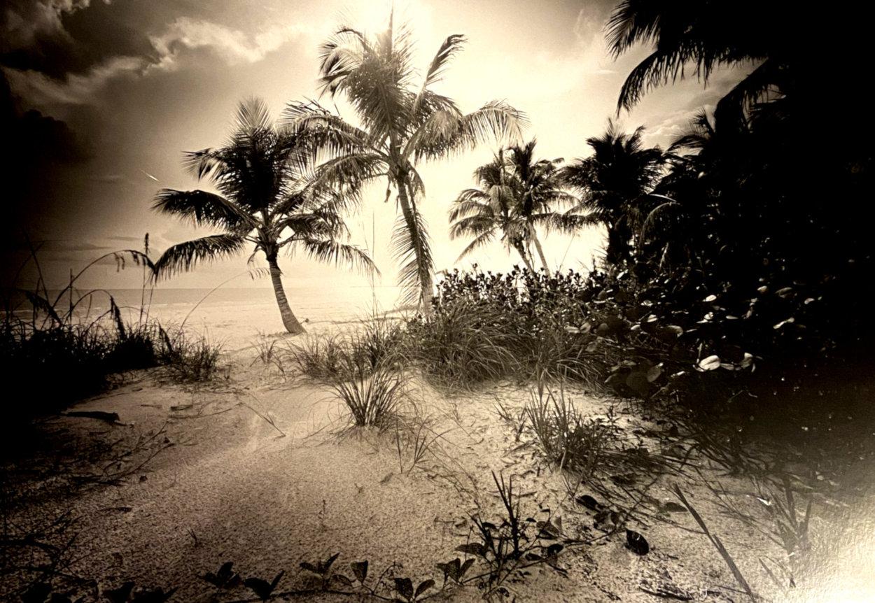 Estero Island 1985 Panorama by Clyde Butcher