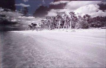 Cayo Costa #1 Florida Panorama - Clyde Butcher