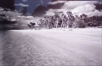 Cayo Costa #1 Florida Panorama by Clyde Butcher