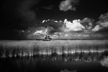 Ochopee-south Florida 1997 Panorama - Clyde Butcher