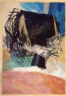 Pink Fields #4 1989 80x54 Super Huge Tapestry by Calman Shemi - 1