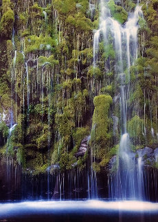 Weeping Wall  Panorama by William Carr