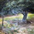 Oak Tree 1996 23x23 Original Painting - Chase Chen