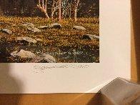 Yosemite Splendor 2009 Limited Edition Print by Alexander Chen - 2