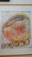 Macchia 1994 Limited Edition Print by Dale Chihuly - 1