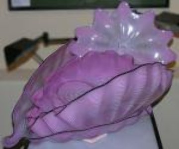Pink Seaform 7 Pc Glass Sculpture Set 1995 Sculpture by Dale Chihuly