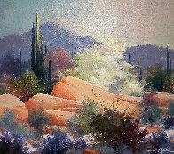 Sonoran Desert 1989 37x43 Huge Original Painting by James Coleman - 0