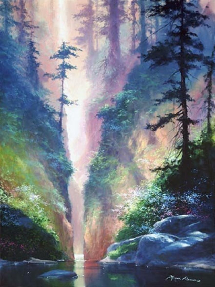 Serenity 49x38 Super Huge Limited Edition Print by James Coleman