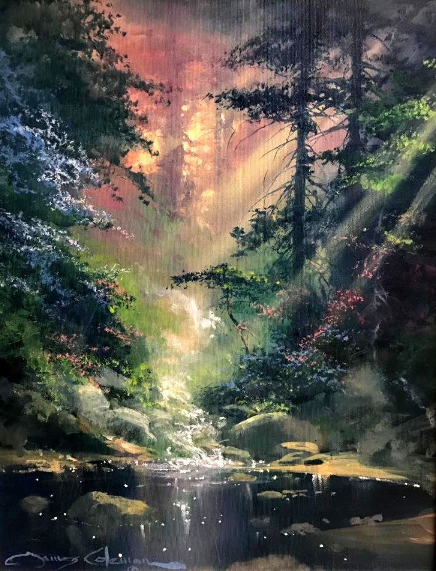 Ray of Light 21x18 Original Painting by James Coleman