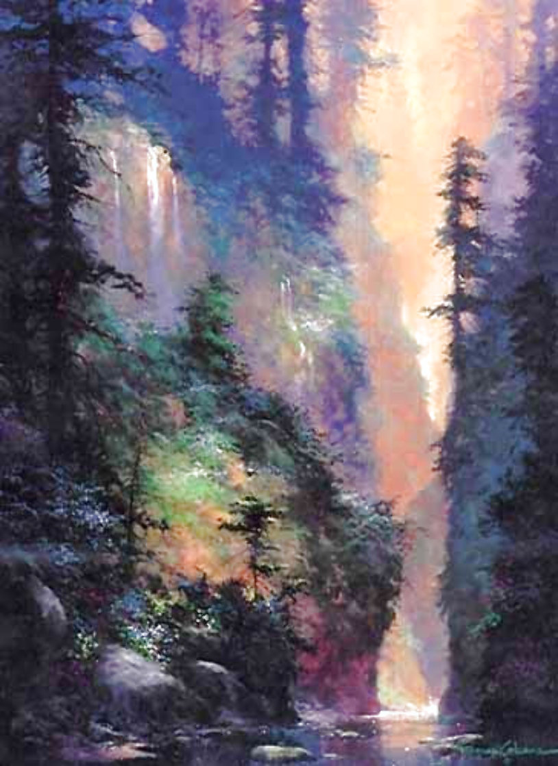 Natures Solitude 1997 Limited Edition Print by James Coleman
