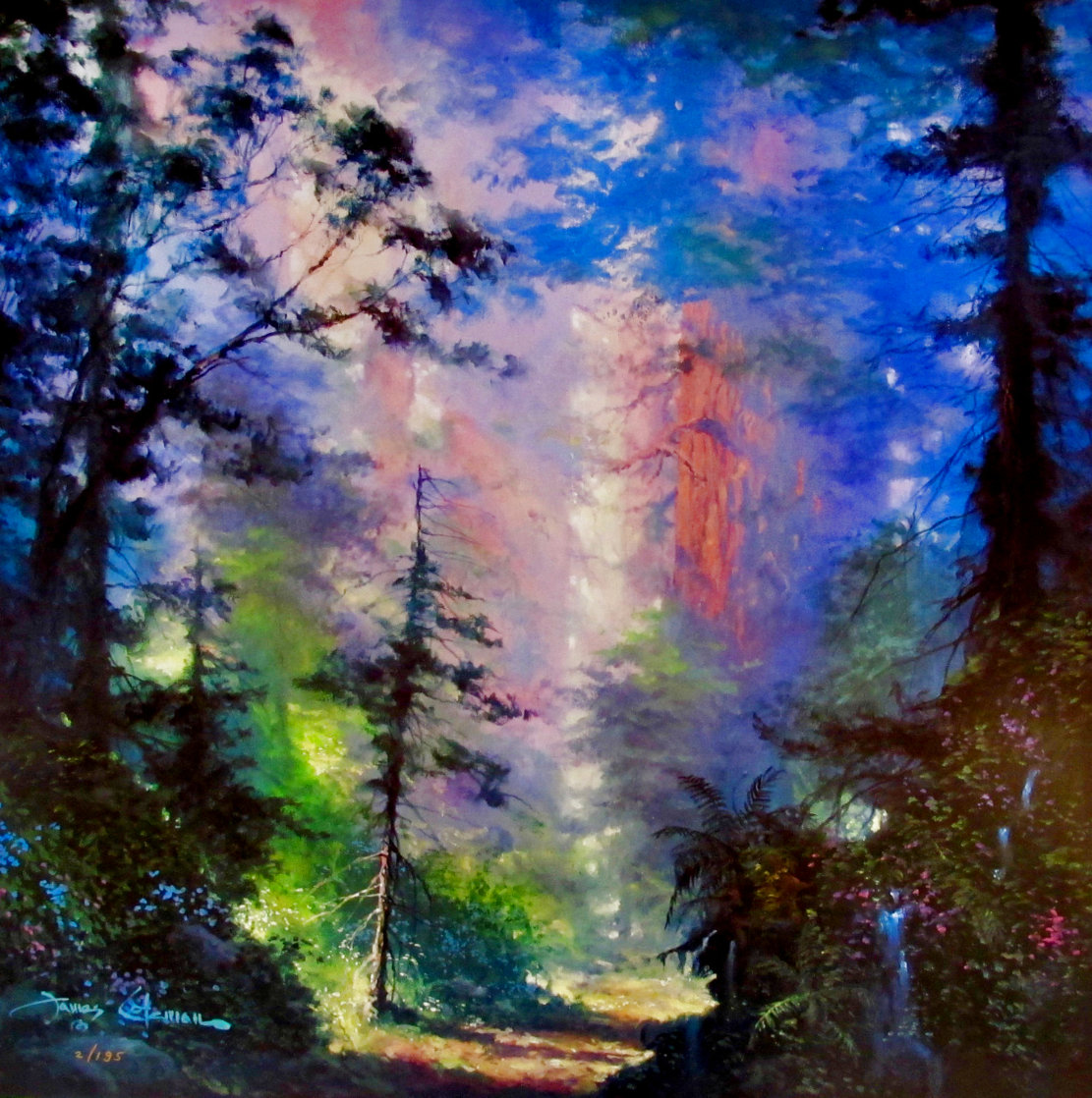 Moment of Peace Limited Edition Print by James Coleman