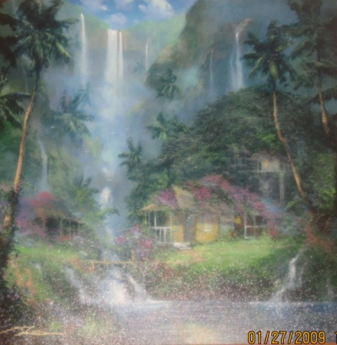 Aloha Spirit AP 2003  Limited Edition Print by James Coleman