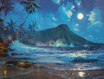 Moon Over Diamond Head 1997 Limited Edition Print by James Coleman