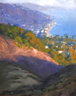 5.30 Above Laguna 37x34 Original Painting - John Cosby