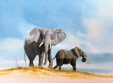 Untitled (Elephants) Watercolor 1995 26x32 Watercolor - Craig Bone