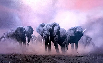 Ghost Of The Etosha 1997 Limited Edition Print - Craig Bone