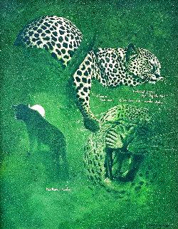 Untitled - Cheetah Studies 33x27 Works on Paper (not prints) - Craig Bone