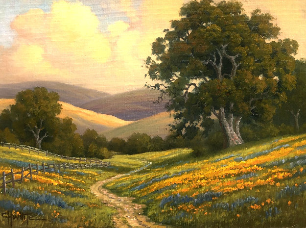 Poppyfield Evening 2010 19x23 Original Painting by Charles White