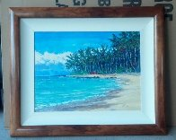 Beach Kanaha, Maui 29x24 Original Painting by Roman Czerwinski - 1