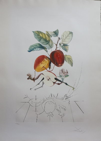 Flordali - Les Fruits Eve's Apple 1969 (Early) Limited Edition Print by Salvador Dali