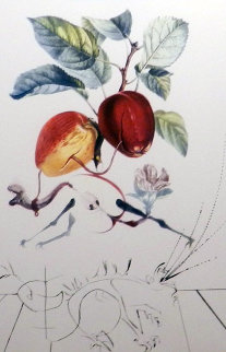 Flordali - Les Fruits Eve's Apple 1969 Limited Edition Print - Salvador Dali