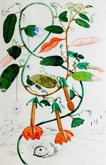 Flora Dalinae Pisum Sensuale 1968 Limited Edition Print by Salvador Dali