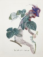 Framboisier (Raspberry) 1969 (Early) Limited Edition Print by Salvador Dali - 0