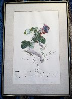 Framboisier (Raspberry) 1969 (Early) Limited Edition Print by Salvador Dali - 1