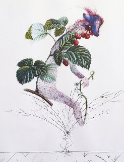 Framboisier (Raspberry) 1969 Limited Edition Print - Salvador Dali