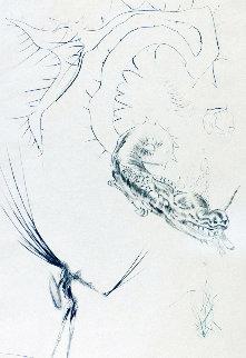 Tristan Et Le Dragon   1970 Limited Edition Print by Salvador Dali