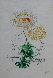 Flora Dalinae Chrysanthemum 1968 Limited Edition Print by Salvador Dali - 2