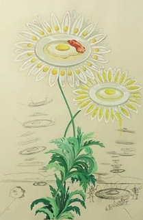 Flora Dalinae Chrysanthemum 1968 Limited Edition Print by Salvador Dali