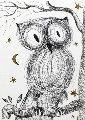 La Petite Chouette  Limited Edition Print - Salvador Dali