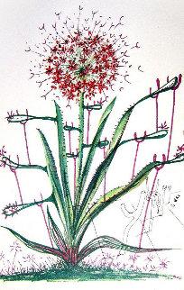 Cactus (Les Bequilles) 1972 Limited Edition Print - Salvador Dali