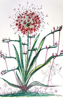 Cactus (Les Bequilles) 1972 (Early) Limited Edition Print - Salvador Dali