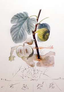 Flordali Les Fruits: Fig 1969 (Early) Limited Edition Print - Salvador Dali