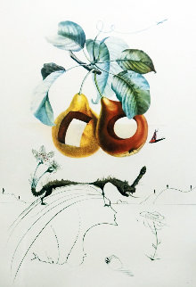 Flordali Les Fruits: Fruit With Holes  Limited Edition Print - Salvador Dali