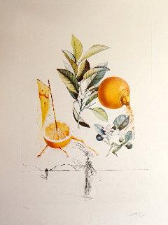 Flordali/les Fruits Grapefruit 1969 Limited Edition Print - Salvador Dali