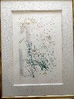 Beloved Feeds Amongst the Lillies 1969 (Early) Limited Edition Print by Salvador Dali - 1