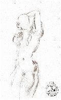 Etude Nu Féminin Du Face Drawing 1963 8x5 Drawing by Salvador Dali - 0