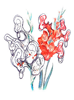 Florals Pirate's Gladioli 1972 Limited Edition Print - Salvador Dali