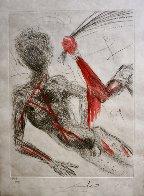 La Venus Aux Fourrures, Complete Suite of 16 Etchings 1968 (Early)  Limited Edition Print by Salvador Dali - 15