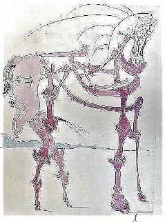 Le Cheval En Rose 1975 Limited Edition Print - Salvador Dali