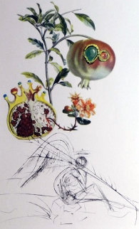Flordali / Les Fruits Pomegranate 1969 (Early) Limited Edition Print by Salvador Dali