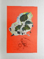 Fruits Blackberries 1970 Limited Edition Print by Salvador Dali - 1
