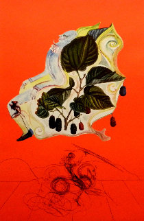 Fruits Blackberries 1970 Limited Edition Print by Salvador Dali