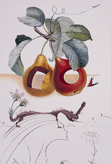 Fruits Trouas Flora Dalinae Les Fruits 1970 Limited Edition Print by Salvador Dali