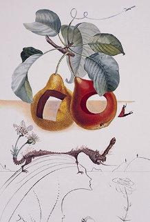 Fruits Trouas Flora Dalinae Les Fruits 1970 Limited Edition Print - Salvador Dali